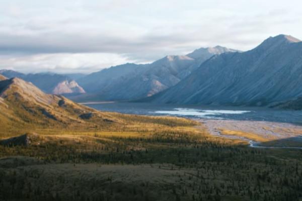 让环保热心人轻松找到组织:Patagonia 推出环保社群平台 Patagonia Action Works