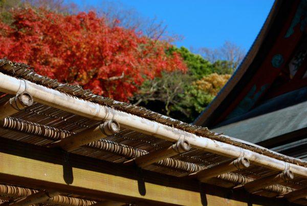 日本入境游市场年均增长33%,麦肯锡最新报告分析日本旅游业发展的三大挑战和五大对策