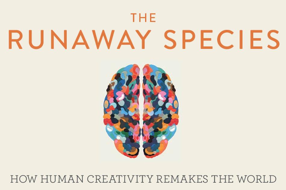 探索人类的核心能力:创造力背后的秘密