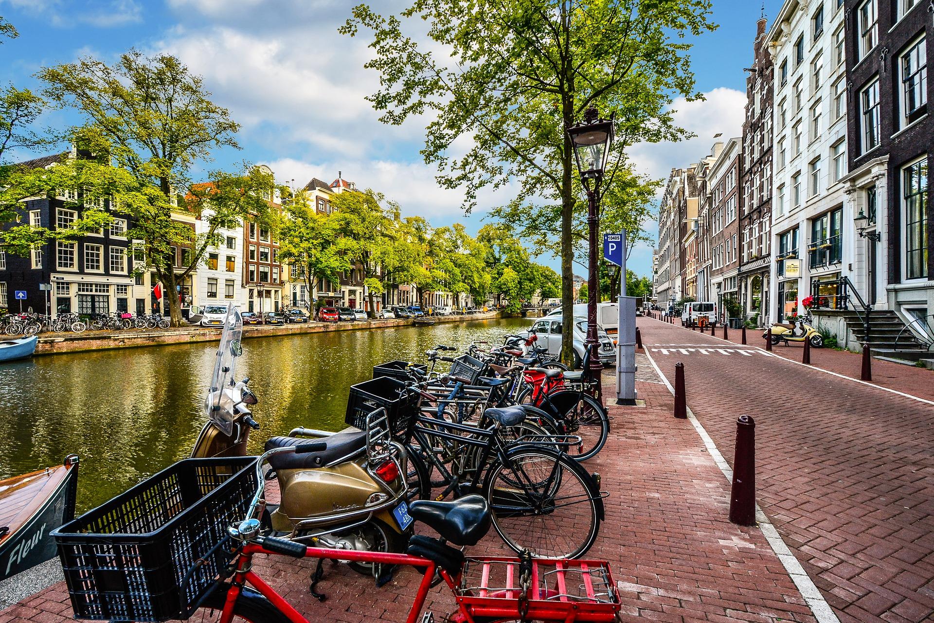 继旧金山之后,阿姆斯特丹也发起了禁止动物皮草交易的立法提案