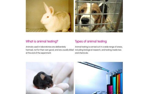 中国豁免动物测试取得重大进展!Cruelty Free与中国政府达成合作,部分进口美妆品牌进入中国将无须动物测试