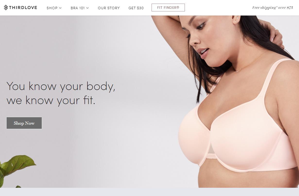 互联网内衣品牌崛起背后的三大决定因素