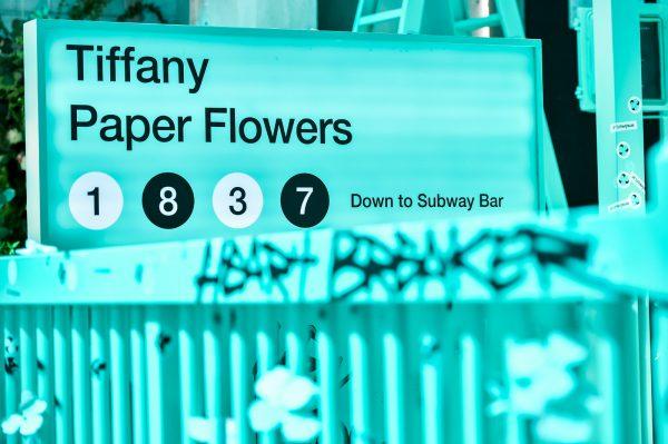 Tiffany 如何在中国推进革新战略?丨《华丽志》专访 Tiffany 高级副总裁 Philippe Galtié