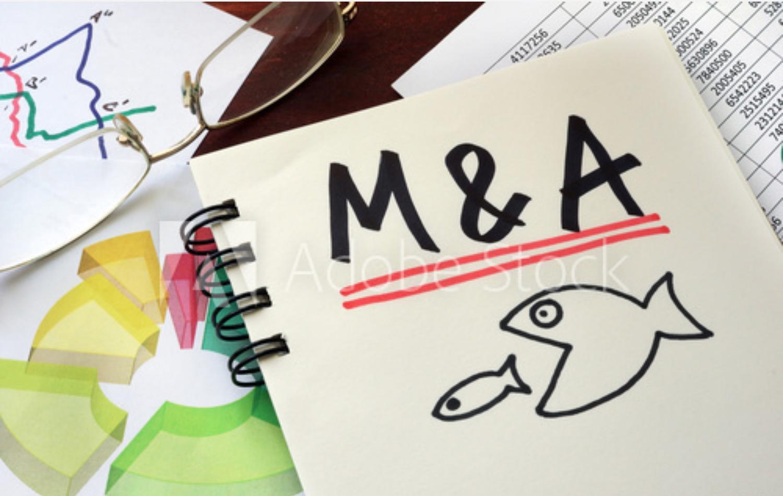 汇丰银行分析师:单品牌战略或被淘汰,更多家族企业将开展品牌并购