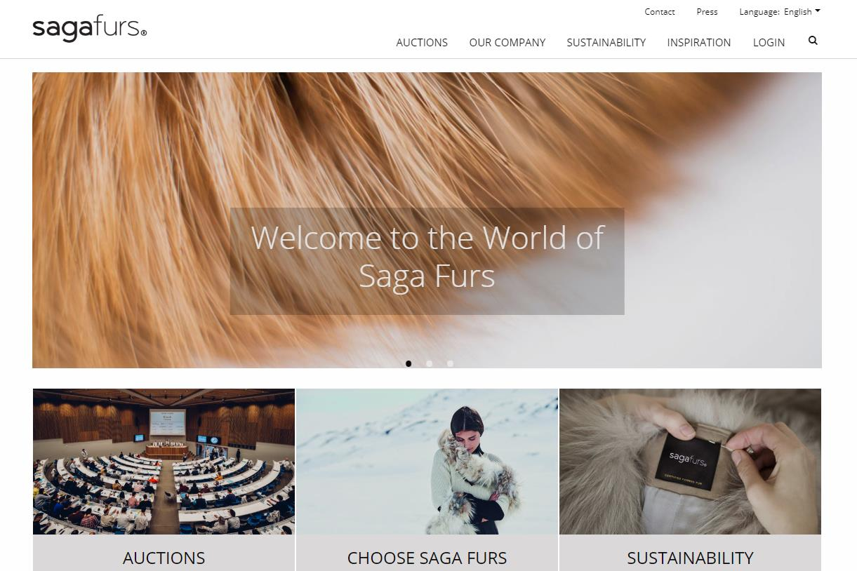 芬兰皮草公司 Saga Furs 上财年销售下滑13%:反皮草阵营日益壮大,中国市场需求放缓