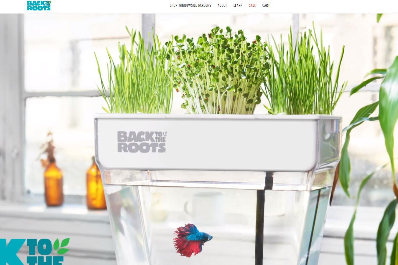 从种蘑菇起步,美国有机食品和家庭园艺初创公司 Back to the Roots 完成300万美元C轮融资