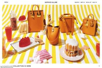 身染罕见疾病,伦敦手袋设计师 Sophie Hulme 宣布同名品牌将于今年十二月份歇业