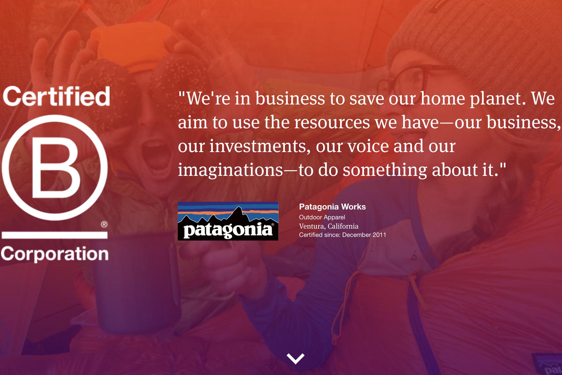 """倡导企业向善:Patagonia、Allbirds 等品牌获得的""""B Corp""""认证究竟是什么?"""