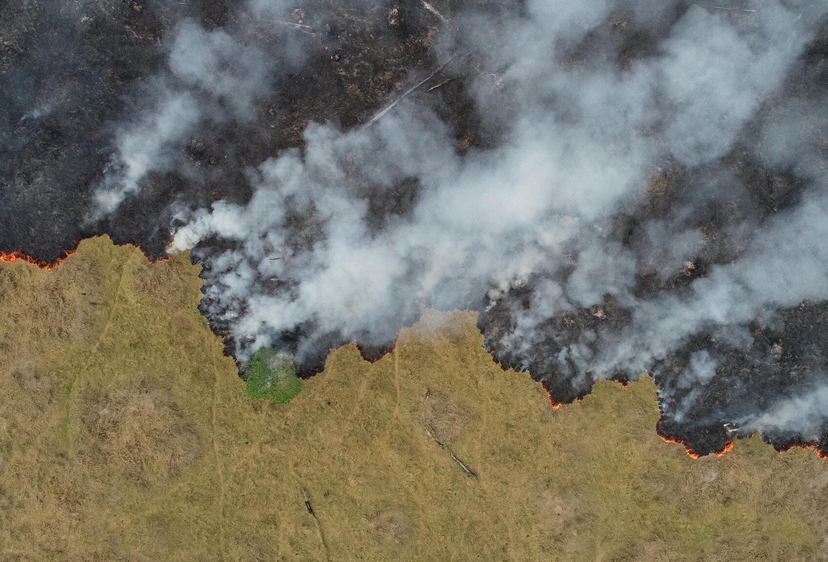 法国奢侈品集团 LVMH 将为扑灭亚马逊雨林大火资助1000万欧元
