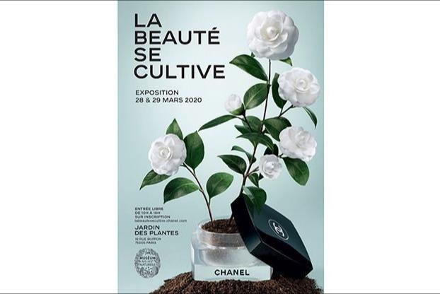 Chanel 将在巴黎举办沉浸式园艺体验展,展示品牌收藏的稀有植物