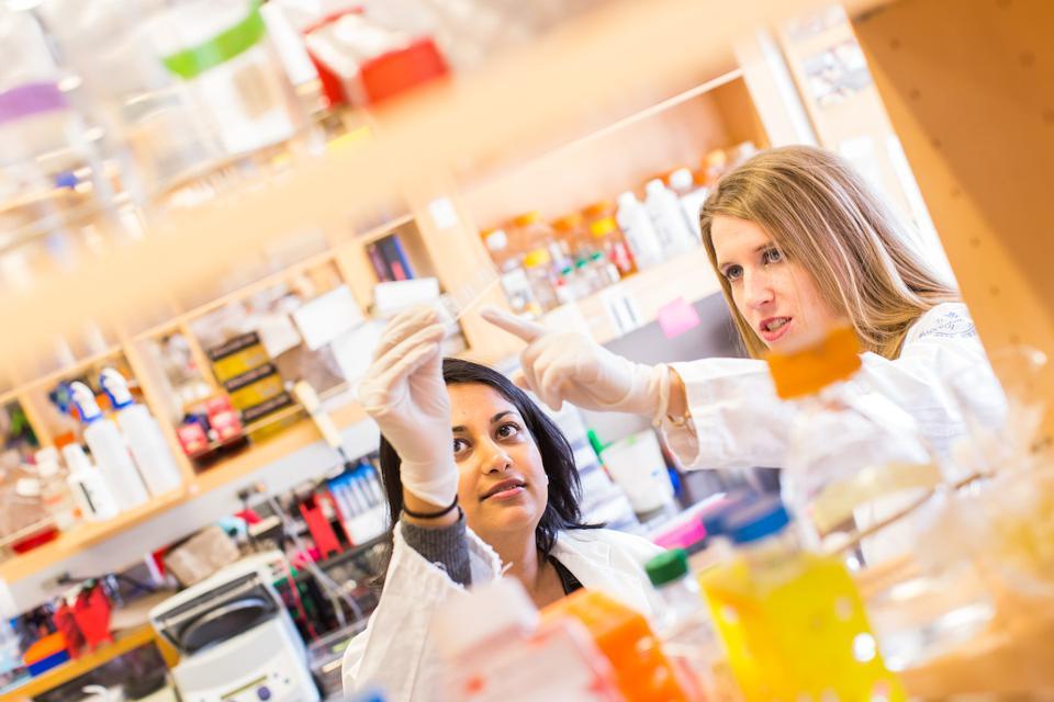 宝格丽设立两只新基金:支持女科学家的科研工作,助力新冠病毒疗法和疫苗的临床测试
