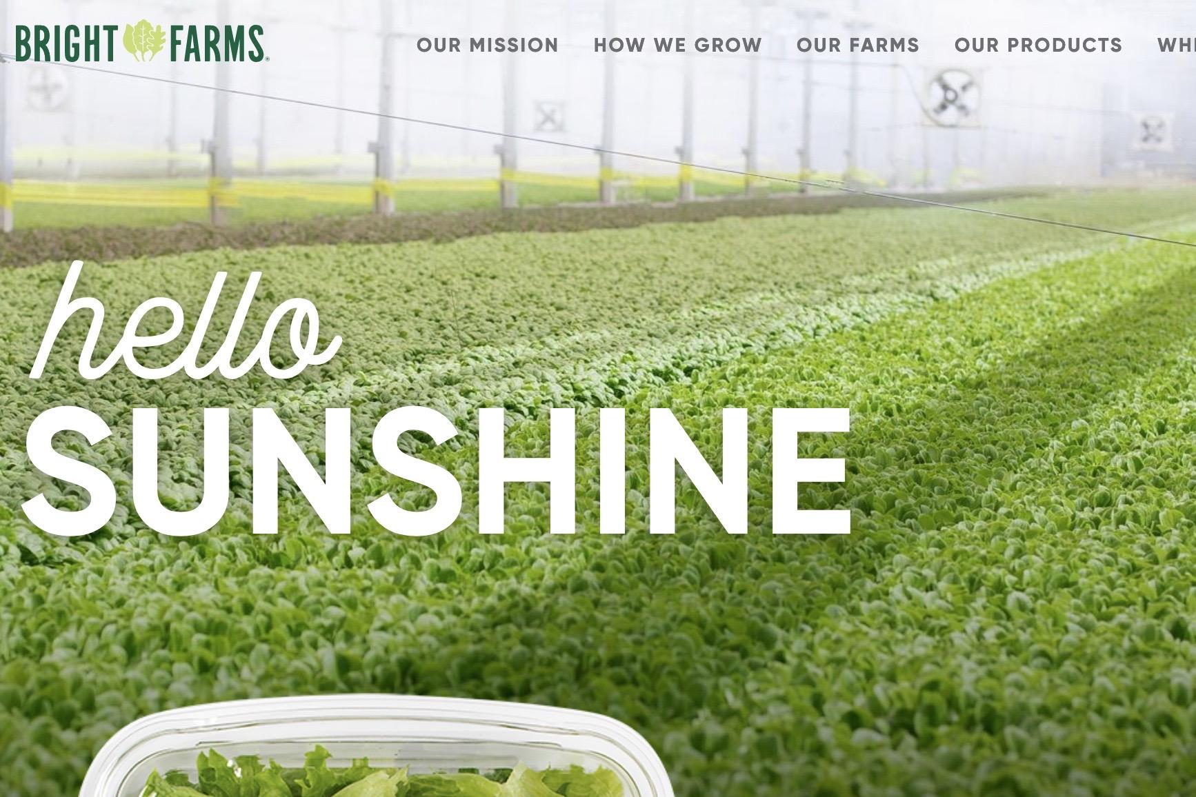 纽约屋顶菜园供应商 BrightFarms 获超过1亿美元E轮融资