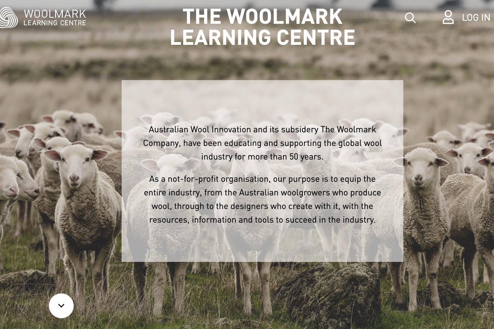 The Woolmark Company 宣布羊毛标志授权认证费用暂时下调50%