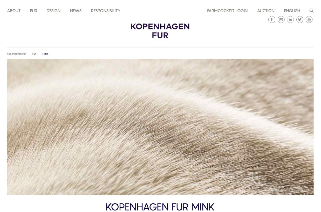 全球最大皮草拍卖行哥本哈根皮草公司将在三年内彻底关闭