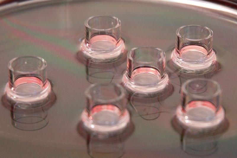 德国汉高收购专利皮肤模型技术 EpiCS
