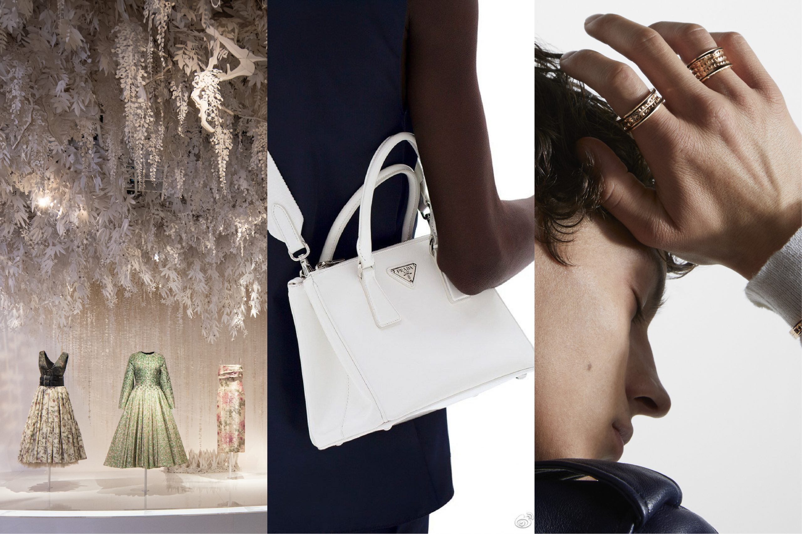 过去两周,这3家奢侈品牌在中国的动向最值得关注【华丽双周榜】2021年第11期
